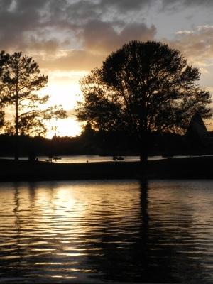 FLORIDA 2011 292
