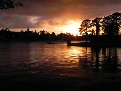 FLORIDA 2011 299